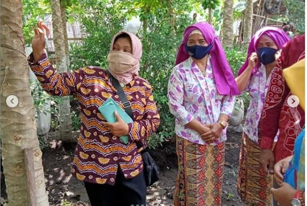 Penjurian Lomba Pawon Urip Tingkat Kecamatan di RT 01 RW 05 Desa Boreng