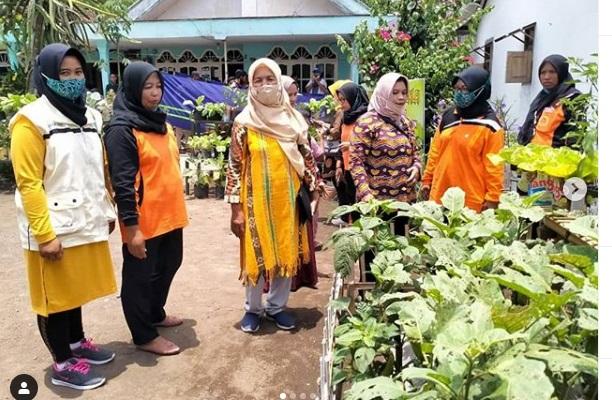 Penjurian Lomba Pawon Urip Tingkat Kecamatan di RT 04 RW 01 Desa Blukon