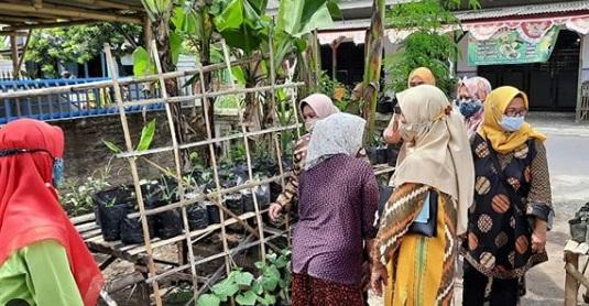 Penjurian Lomba Pawon Urip Tingkat Kecamatan di RT 04 RW 02 Desa Denok