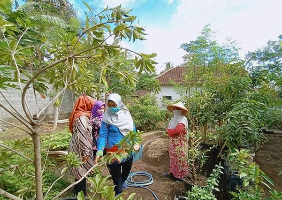 Penjurian Lomba Pawon Urip Tingkat Kecamatan di RW 01 Desa Banjarwaru